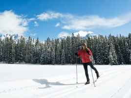 cross_country_skiing-cropped1