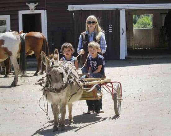 Only the littlest kids are the most excited and cool enough for donkey cart rides at our Colorado dude ranch.