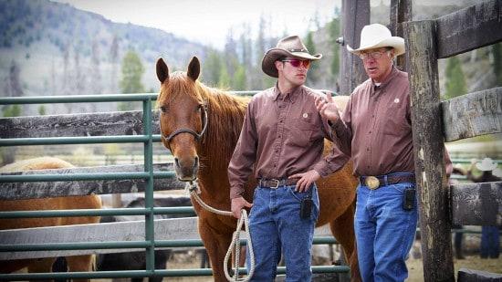 head-wrangler-and-horse