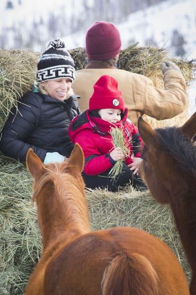 kid next to ponies