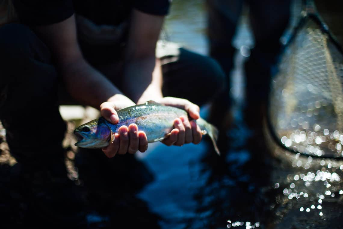 Man holding a fish