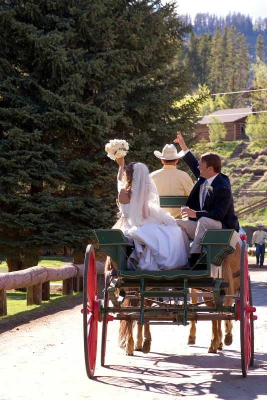 Horse drawn carriage wedding entrance