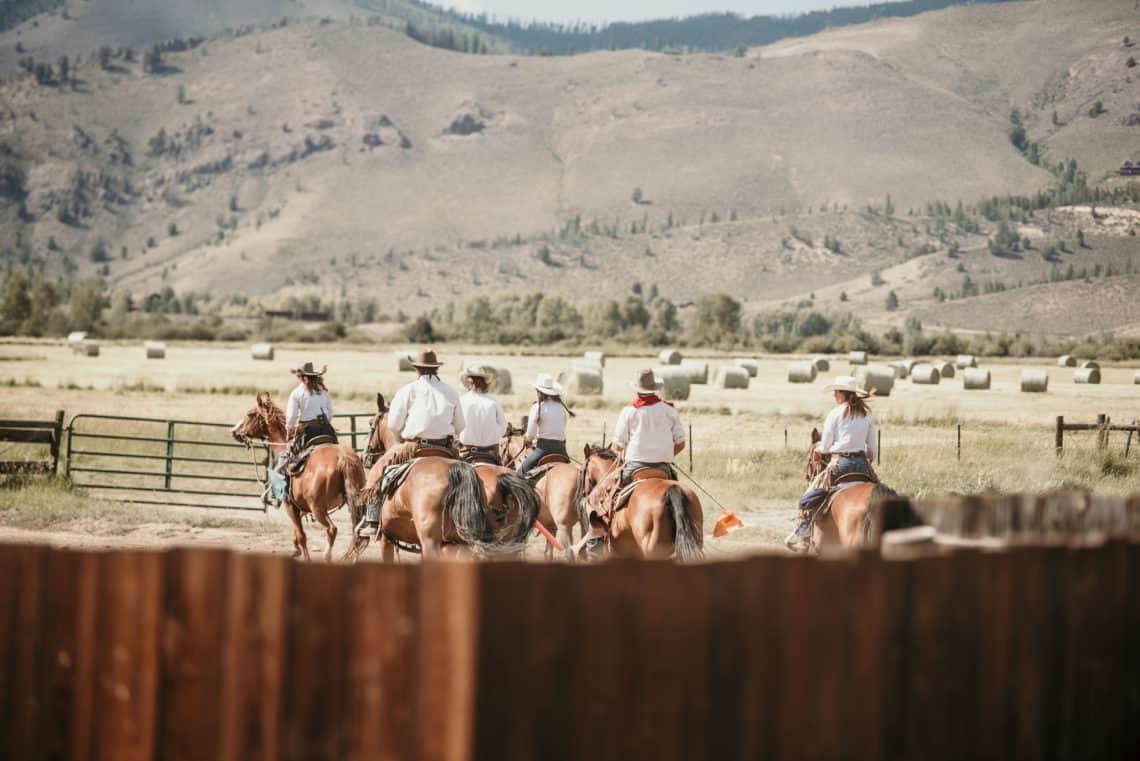 staff riding horses