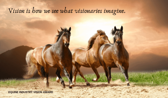 Barbra Schulte is a Finalist for the 2020 Equine Industry Vision Award!