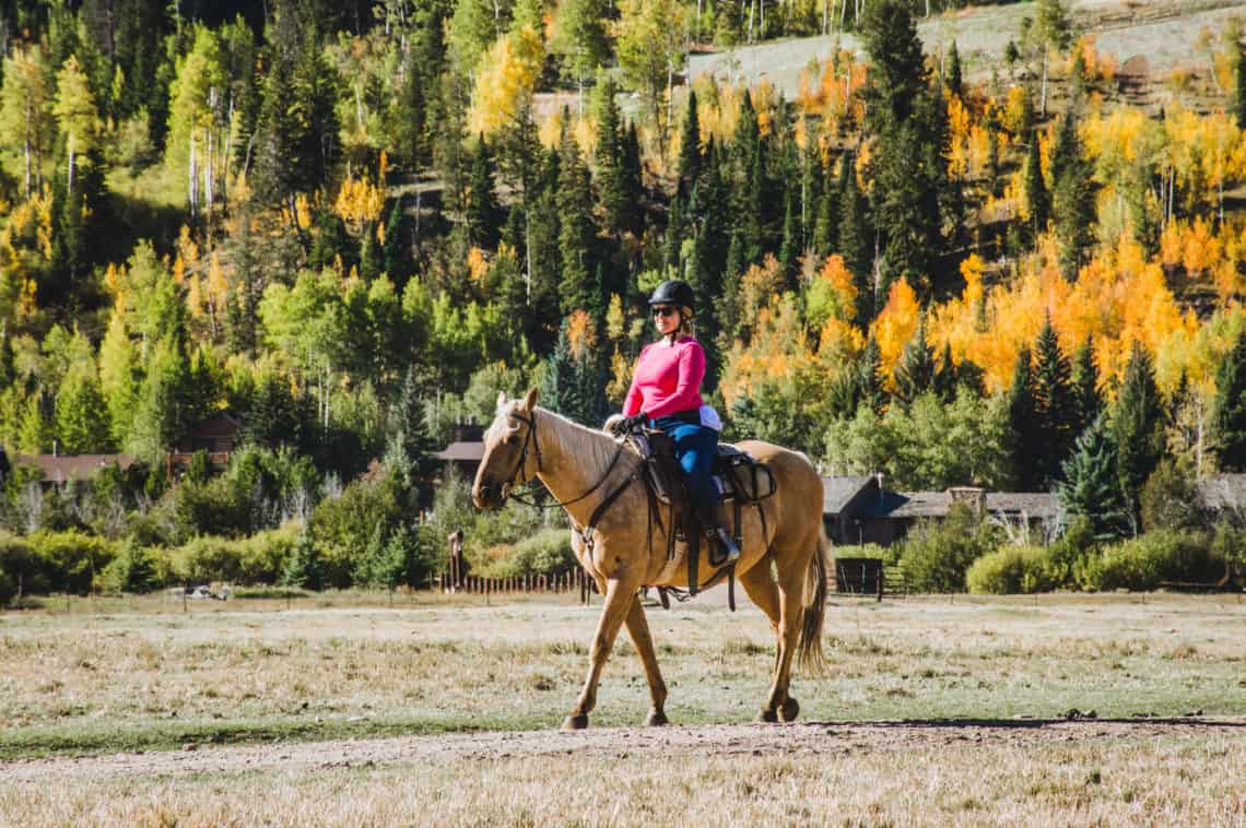 woman on top of horse