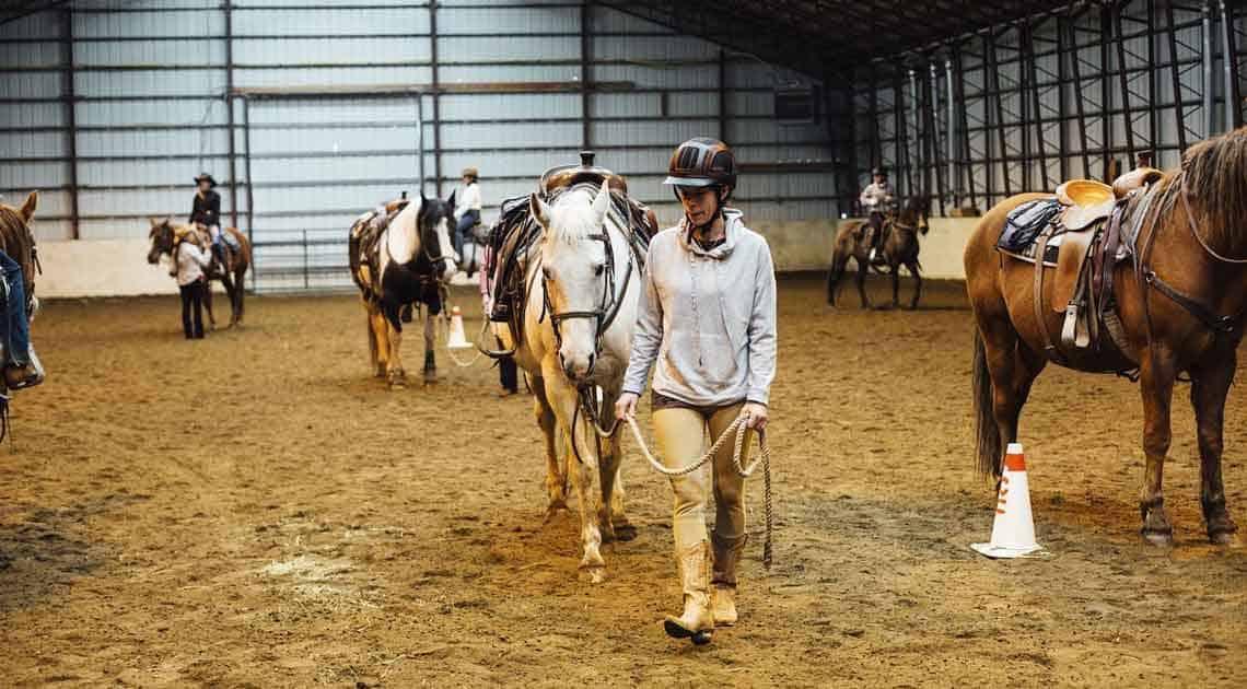 horsemanship groundwork activity