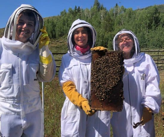 The Beekeepers at C Lazy U Ranch