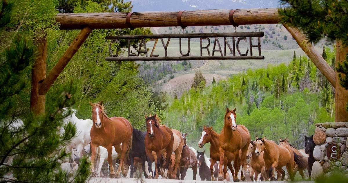 Specials Amp Events C Lazy U Ranch