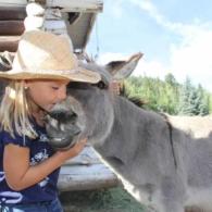 Petey enjoys a kiss from a pretty little girl