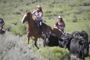 girls-pushing-cattle-uphil