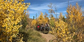 Plan a family vacation at our dude ranch this fall!