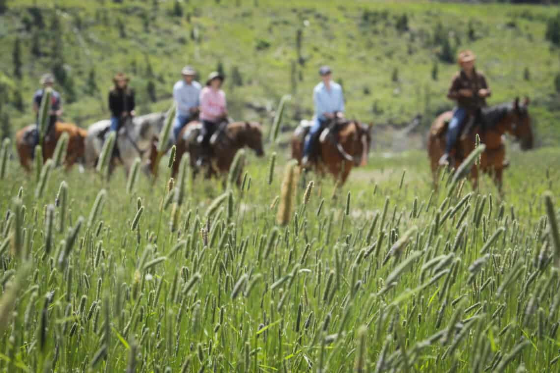 group riding in background
