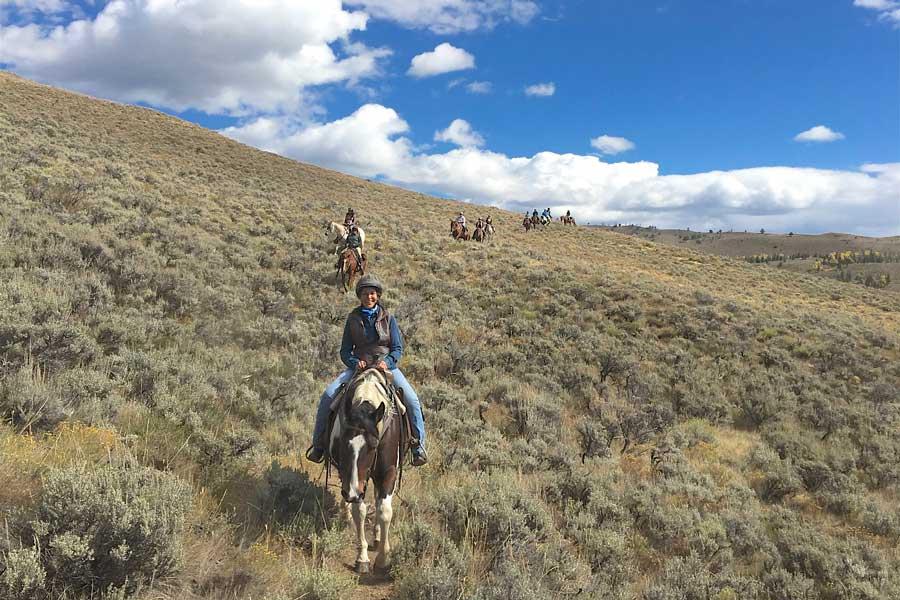 horses at womens retreat