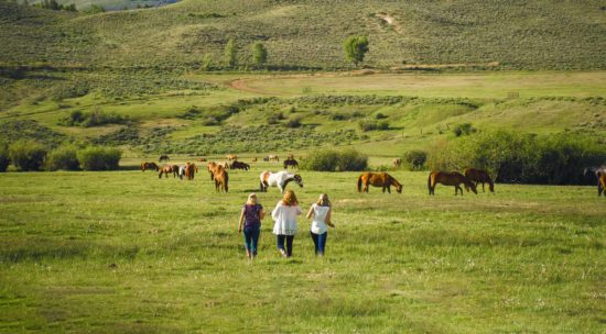 Women heading out to the pasture for Horses & Happy Hour