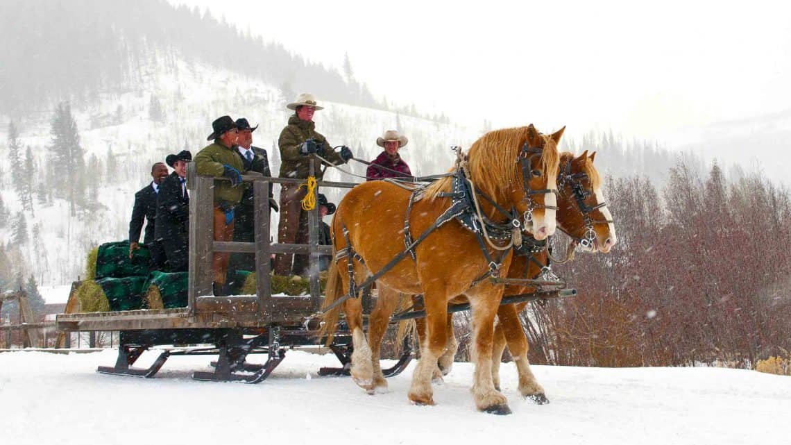 sleigh-ride-in-snow