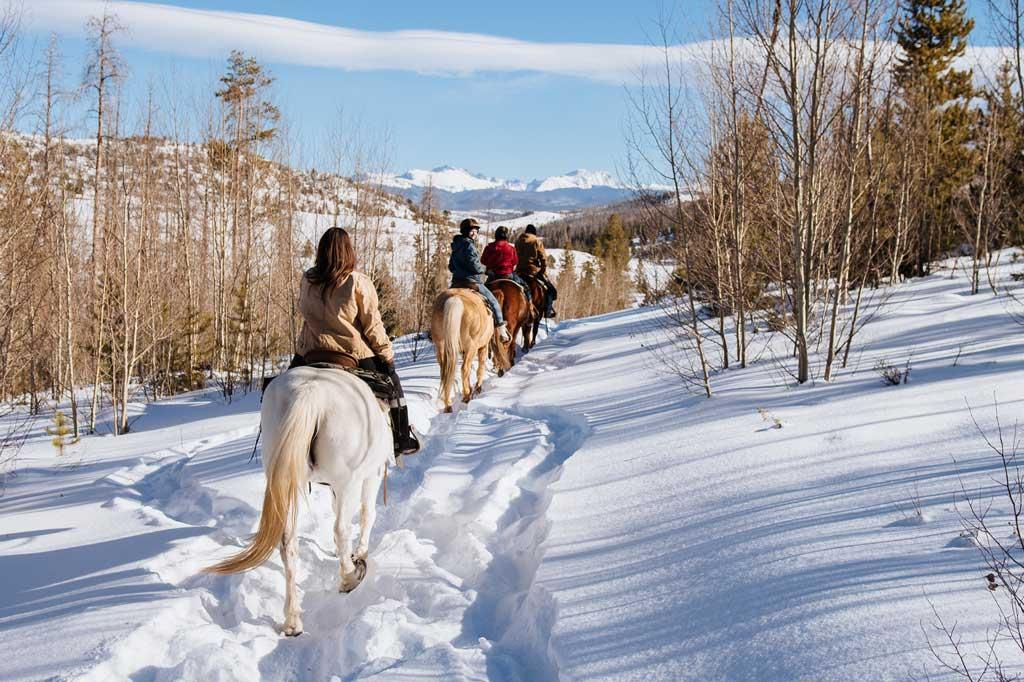 Horsebacking riding in snow